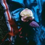 泣きのオルタナロックバンド Gleemer、『Moving Away』を発表