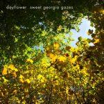 UKサマー・ドリームポップバンド Dayflower、新曲 'Sweet Georgia Gazes'を公開