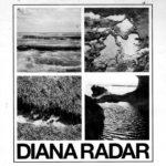 メルボルンのガレージロックバンド Diana Radar、'Sex Sells'のMVを公開